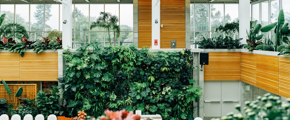 Living wall in open work floor plan.