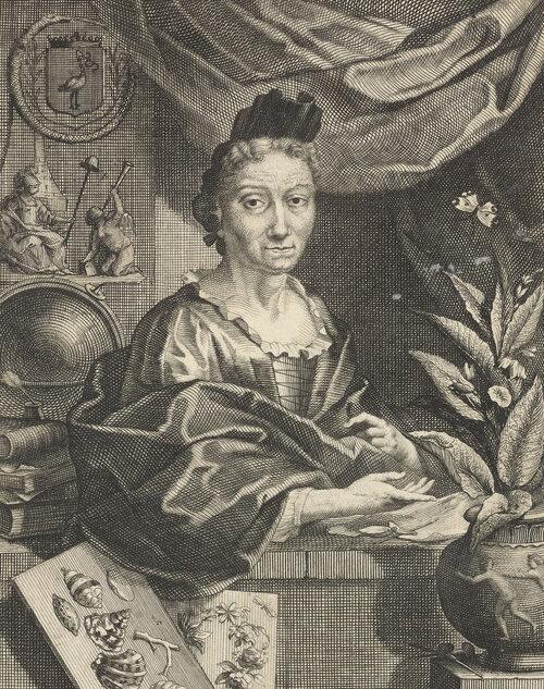 Naturalist and artist Maria Sibylla Merian, print by Jacob Houbraken