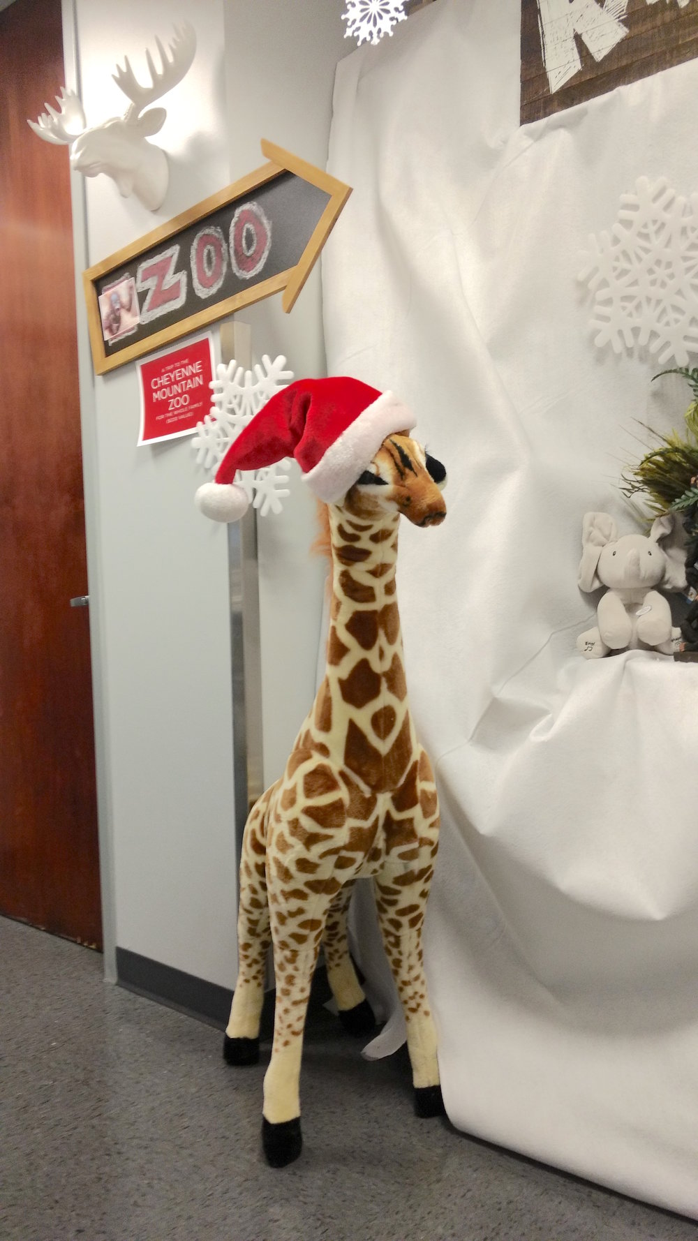 16-Everyone fell in love with the giraffe at the Cheyenne Mountain Zoo Gift Station.jpg