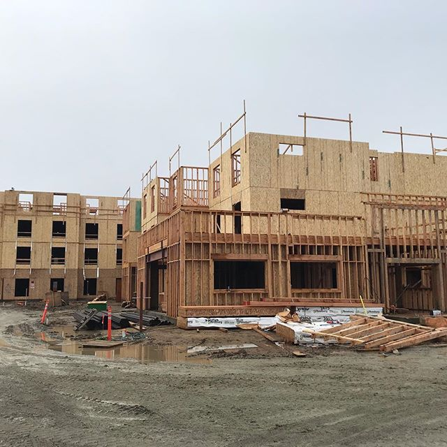 Despite the wet weather our Hilton project is moving along nicely!