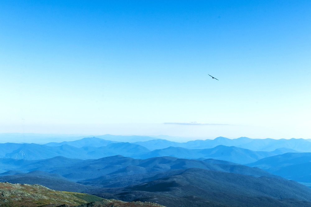 Landscape photo of Mount Washington in the White Mountains in New Hampshire by Vision Balm in Charleston, SC.