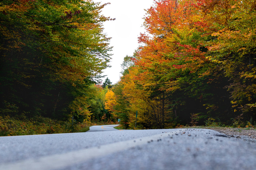 Landscape photo along the Kancamagus Highway in North Conway, New Hampshire in fall by Vision Balm in Charleston, SC.