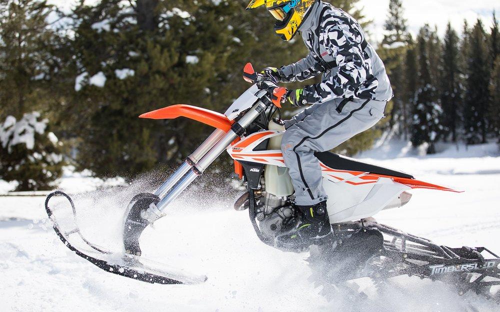 action-motor-sports-sled.jpg