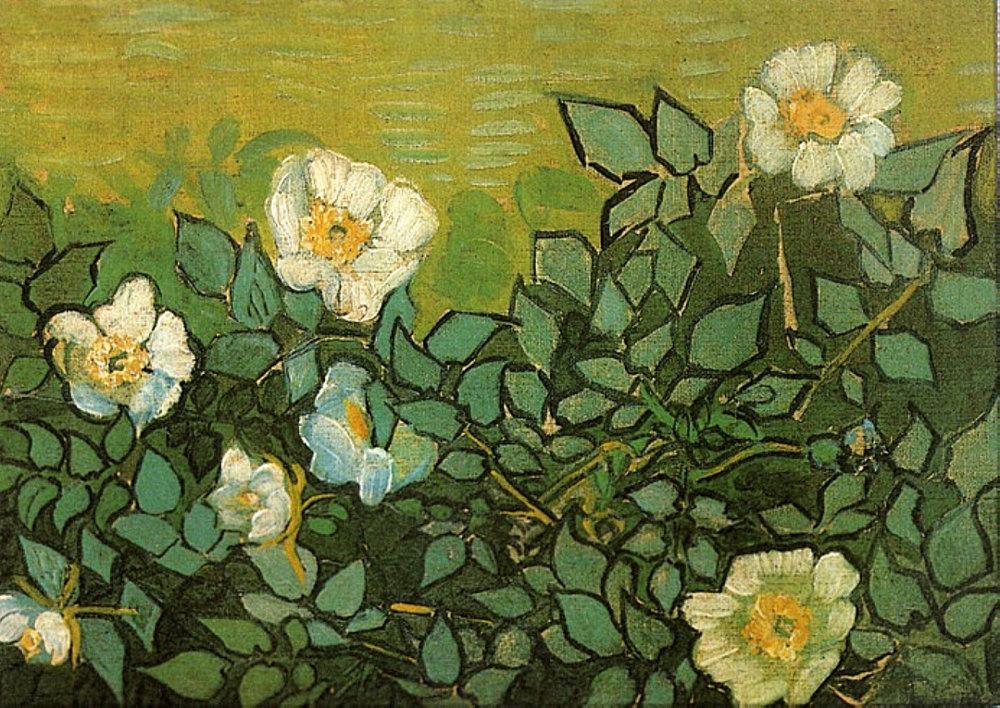 dappledwithshadow :      Wild Roses , Vincent van Gogh   1890