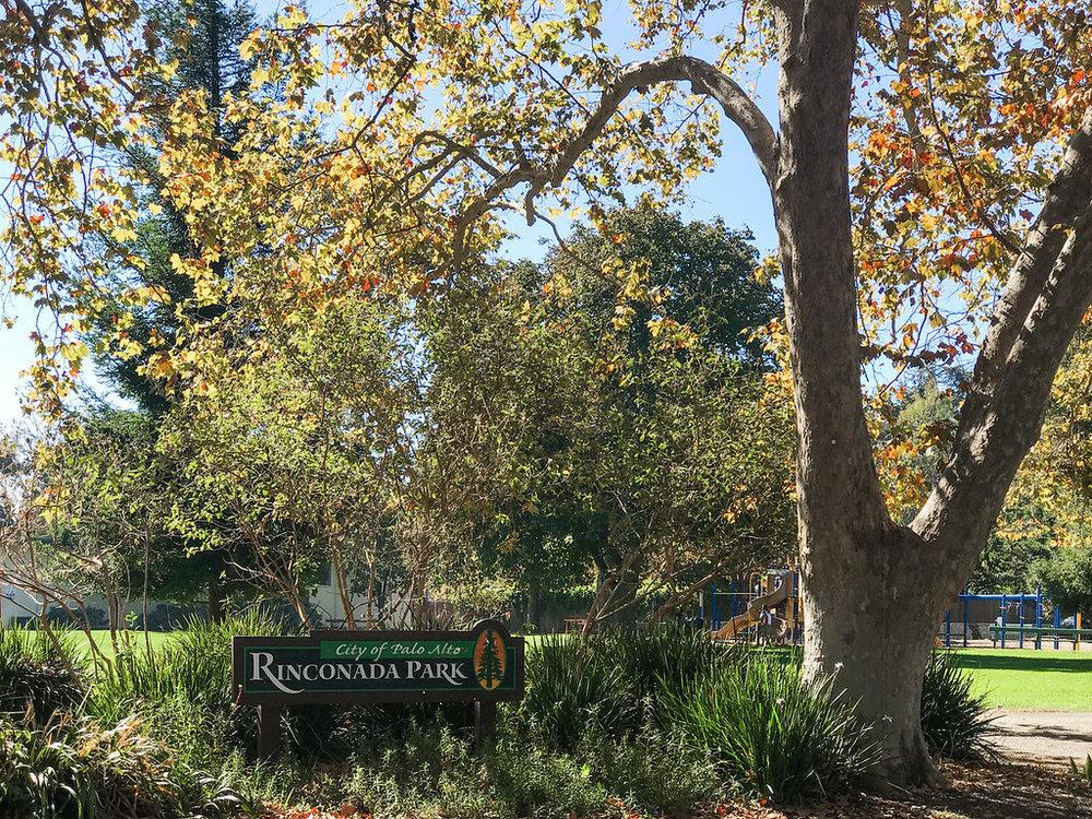 Rinconada Park Palo Alto Blu Skye Media-2220-XL.jpg