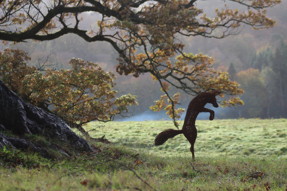 HR leaping fox and Tree.JPG