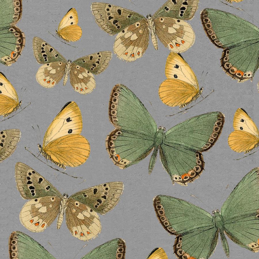 Butterflies Light
