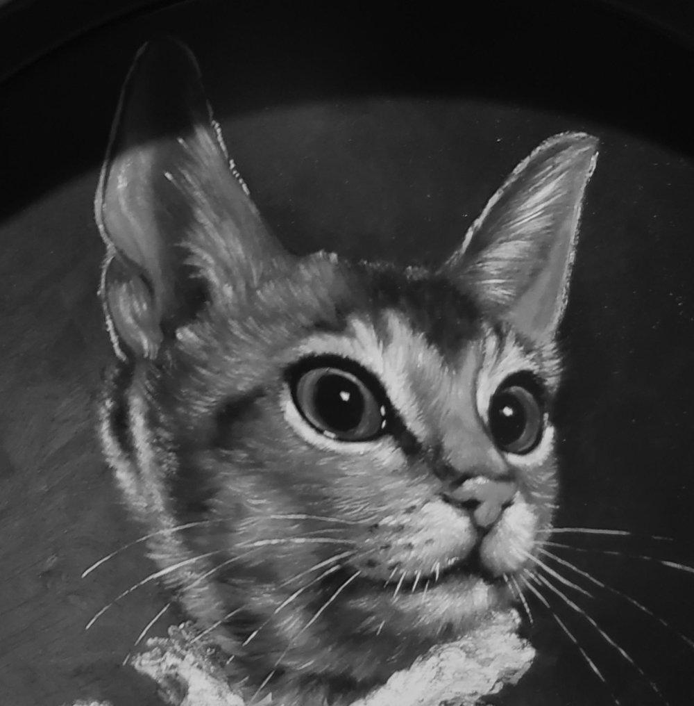 Kitty - Meow