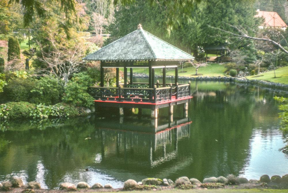 TDV 016 Japanese Gardens.jpg