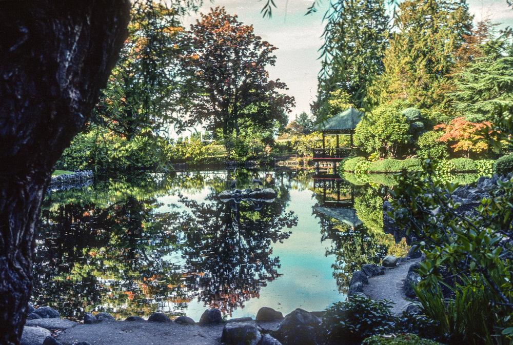 TDV 013 Japanese Gardens.jpg