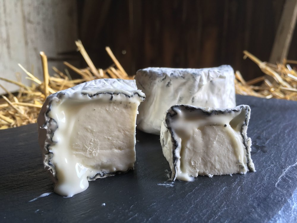 Cavalry Camp Ash , dusted with ash before it begins to age, a rich and creamy bloomy rind cheese similar to Catoctin but with subtle differences in flavor due to the effects of the ash on the chemistry of the cheese