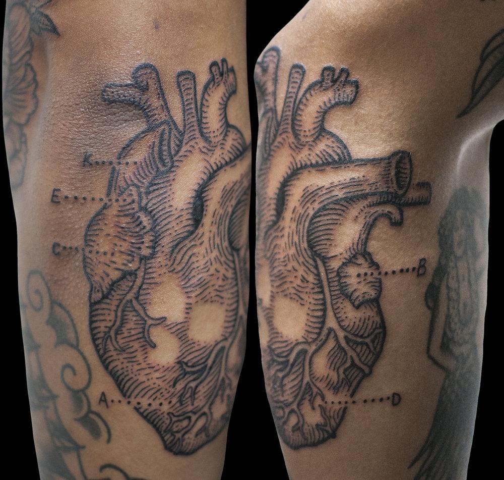 jason_anatomicheart.jpg