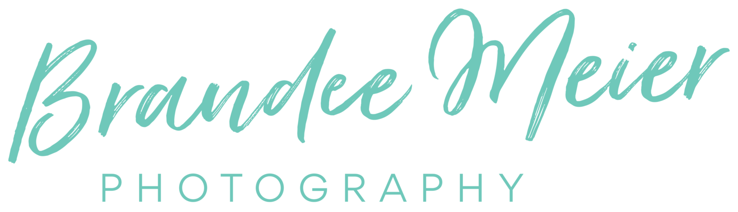 Brandee Meier Photography