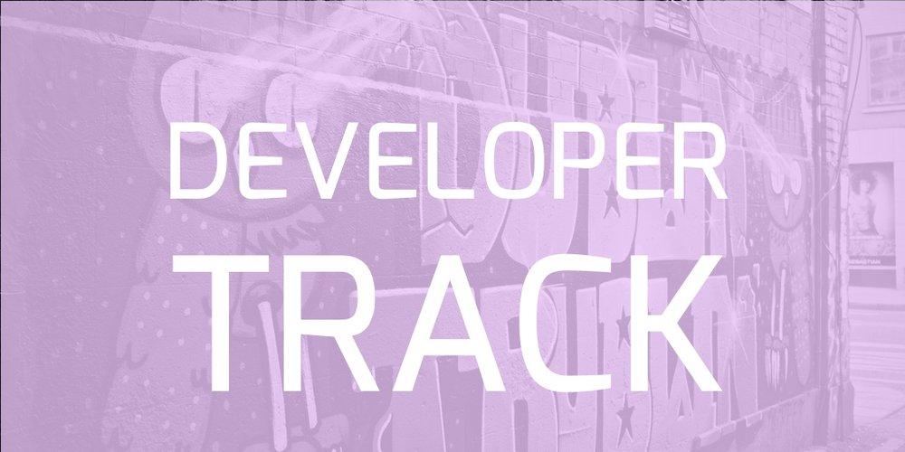 Developer track.jpg