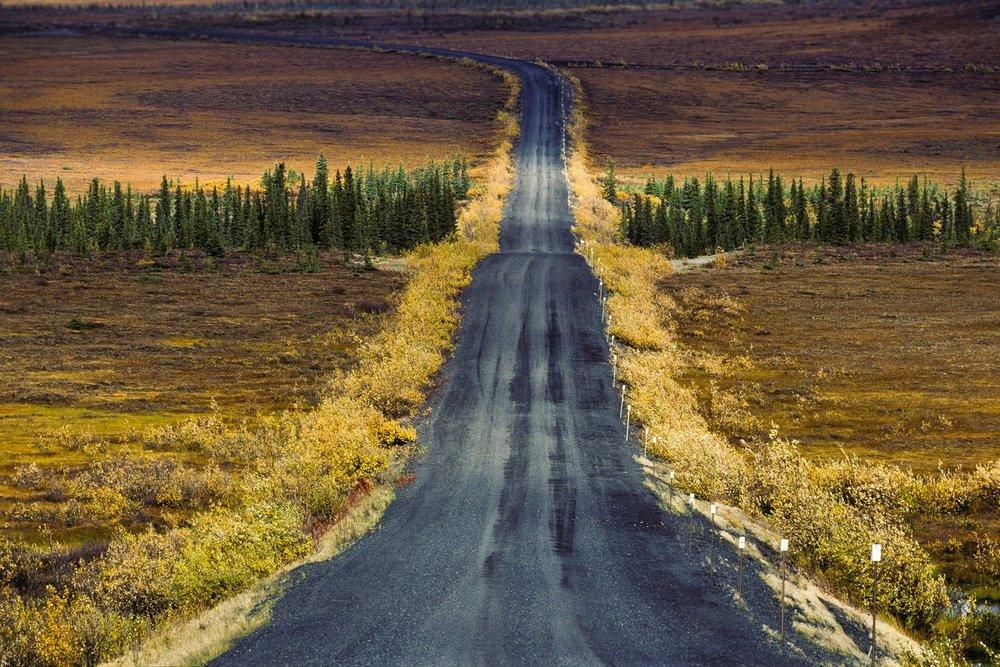 Siegfried-Salzmann-Fotografie-Kanada-Yukon-6.jpg