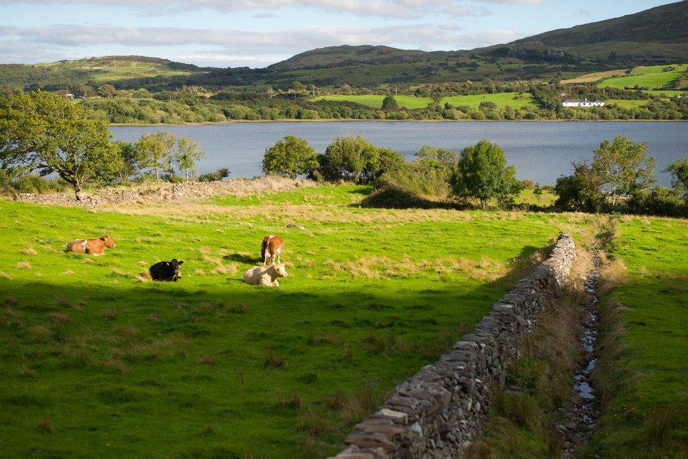 Siegfried-Salzmann-Fotografie-Irland 2013-12.jpg