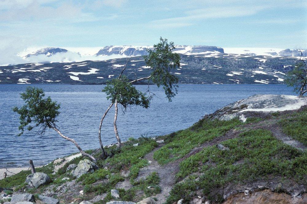 Siegfried-Salzmann-Fotografie-Norwegen-10.jpg