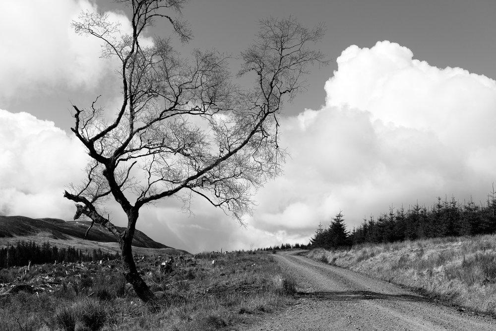 Siegfried-Salzmann-Fotografie-Schottland 2016-3.jpg