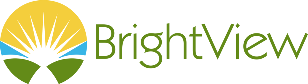 bright view logo.png