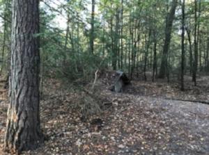 The underground huts lie well hidden