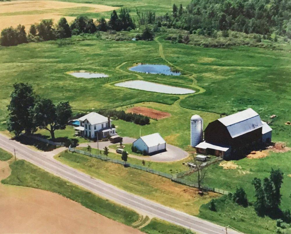Tanner Creek Farm, 1997.