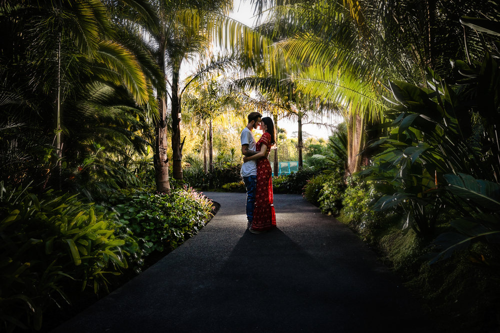 Hamilton-Gardens-tropical-Gardens-engagement-photo-Waikato-Wedding photographer-Nz (1).jpg
