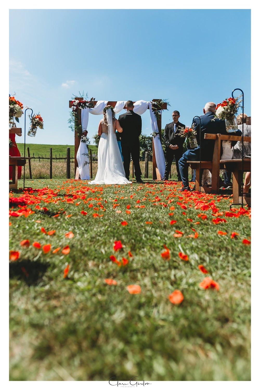 Tauranga-bay-of-plenty-Wedding-Forest-wedding (27).jpg