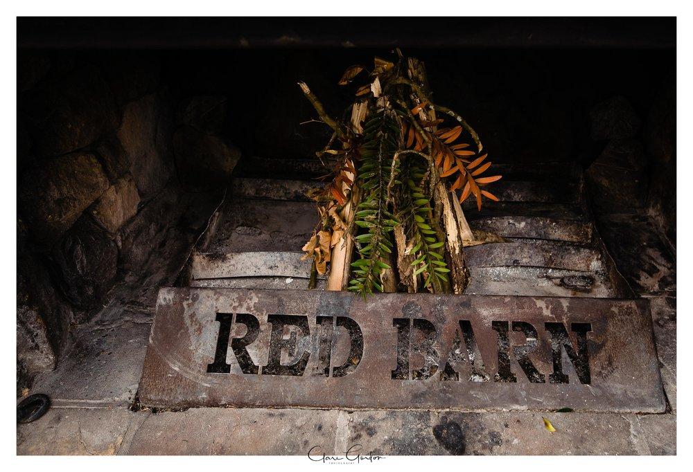 The-red-barn-wedding-Waikato-NZ (71).jpg