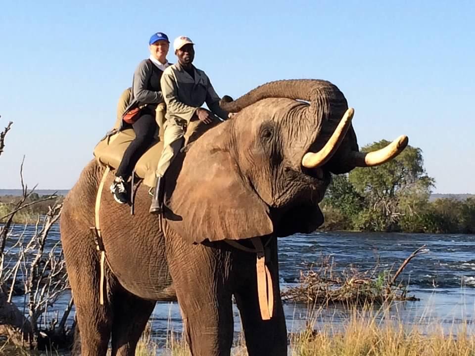 Karen King - Elephant Ride