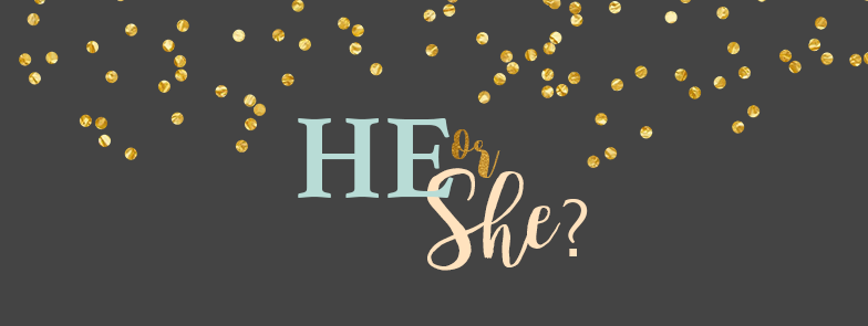 Gender Reveal blog banner