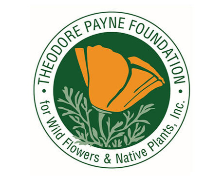 Theodore Payne Foundation  was established in 1960 and carries on the work of horticulturist and conservationist Theodore Payne (1872-1963). This English immigrant fell in love with California's flora, especially its wild flowers, and recognized early on that this flora was threatened by urban development.   Theodore Payne Foundation inspires and educates Southern Californians about the beauty and ecological benefits of California native plant landscapes.