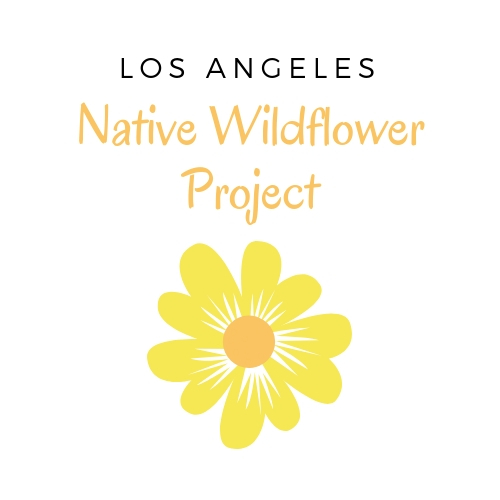 The LA Native Wildflower Project
