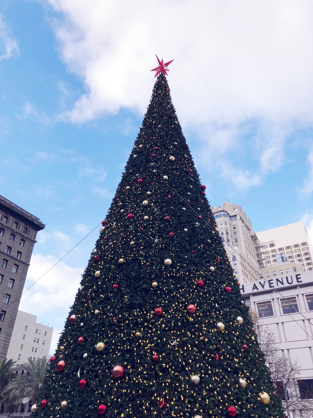 The huge Christmas tree in Union Square.