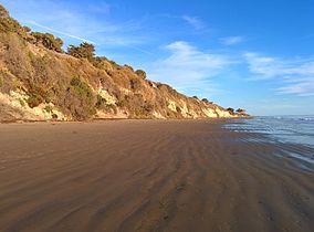 284px-El_Capitán_State_Beach_beachview.jpg