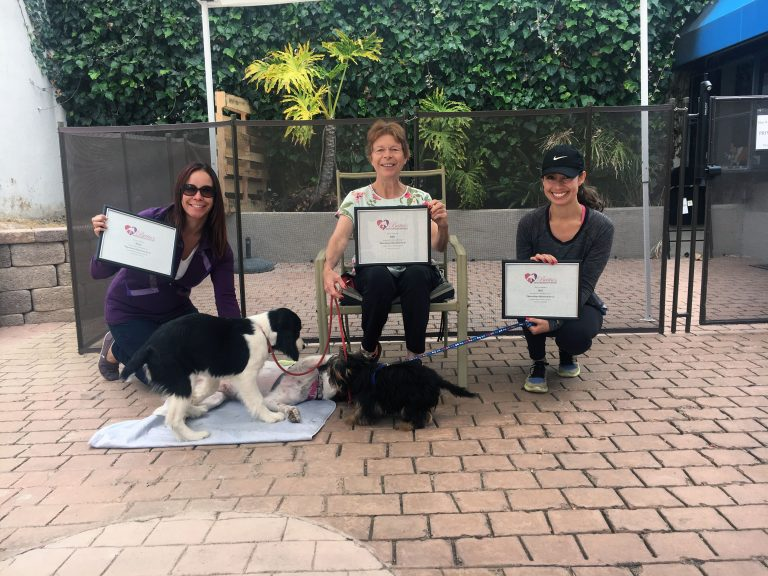Marvelous Manners for 3 - Join animal trainer, Britta Wilson, for an exclusive group class limited to 3 dog and handler teams!