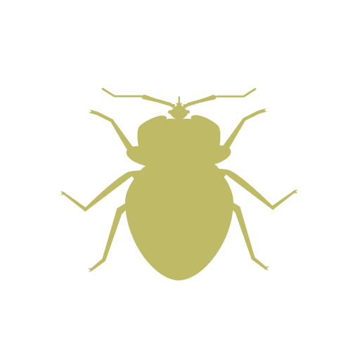 noun_bed bug_33760.png