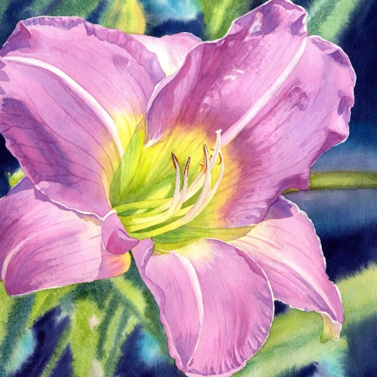 """Lavender Vista Daylily"" Watercolor by Lorraine Watry"