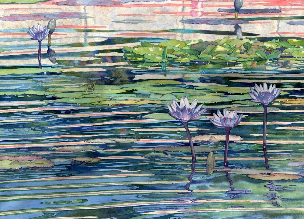 Stained Glass Waterlilies © Lorraine Watry
