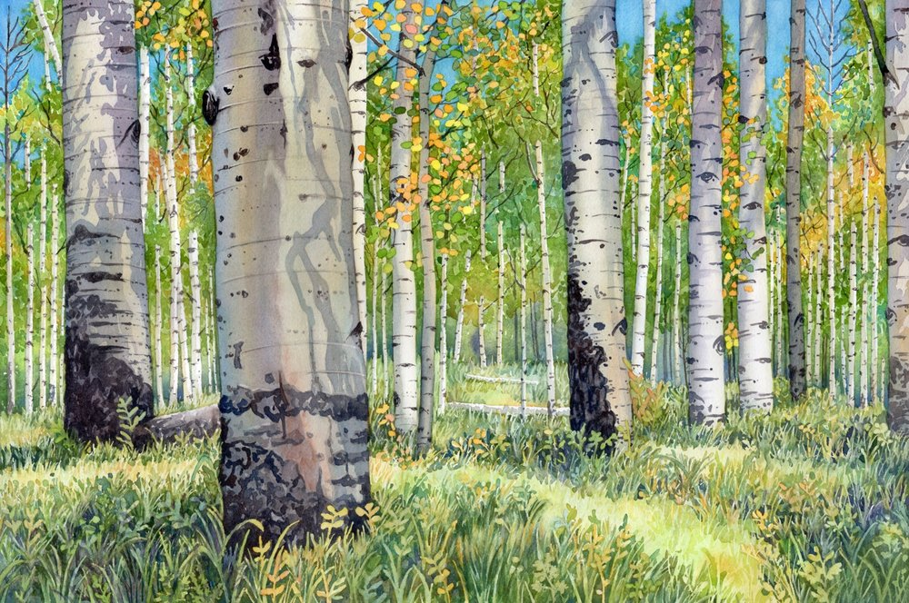 Colorado Autumn © Lorraine Watry