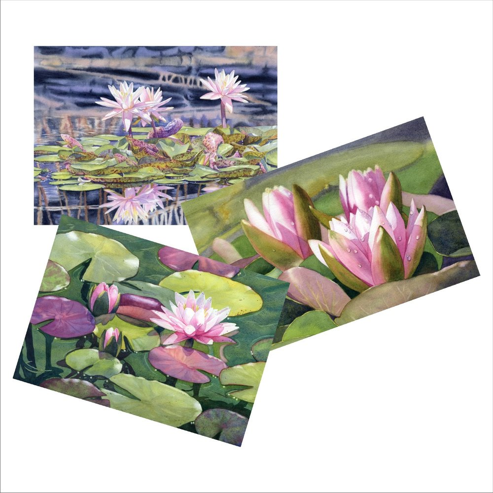 Waterlily Blank Note Cards from watercolors by Lorraine Watry