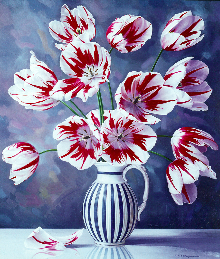 RED & WHITE TULIPS