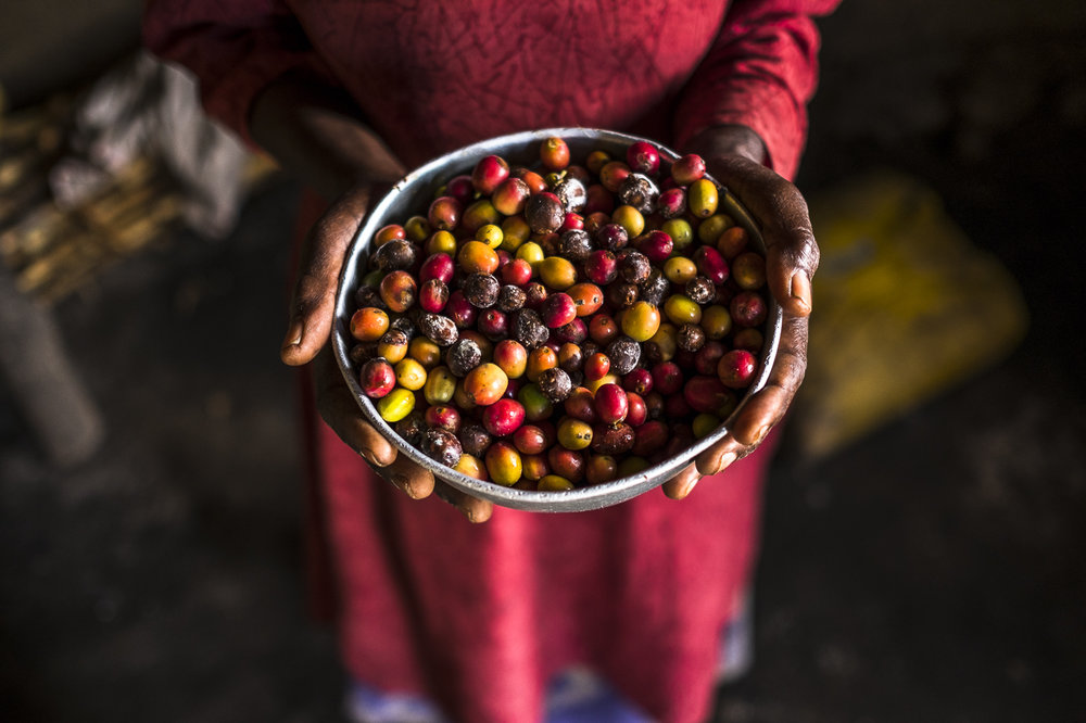 ÉLAN RDC - ÉLAN RDC est un projet de développement des systèmes de marchés financé par UKAID et mis en œuvre par Adam Smith International.En dépit de son extraordinaire potentiel économique, la République Démocratique du Congo reste désespérément pauvre. Des décennies de conflit, d'instabilité et de mauvaise gouvernance sont à l'origine d'un lourd bilan : 85 % de la population vit dans la pauvreté et se trouve privée d'opportunités pour en sortir.Nous attaquons à la racine, les causes de défaillance du marché et les obstacles à la croissance inclusive.