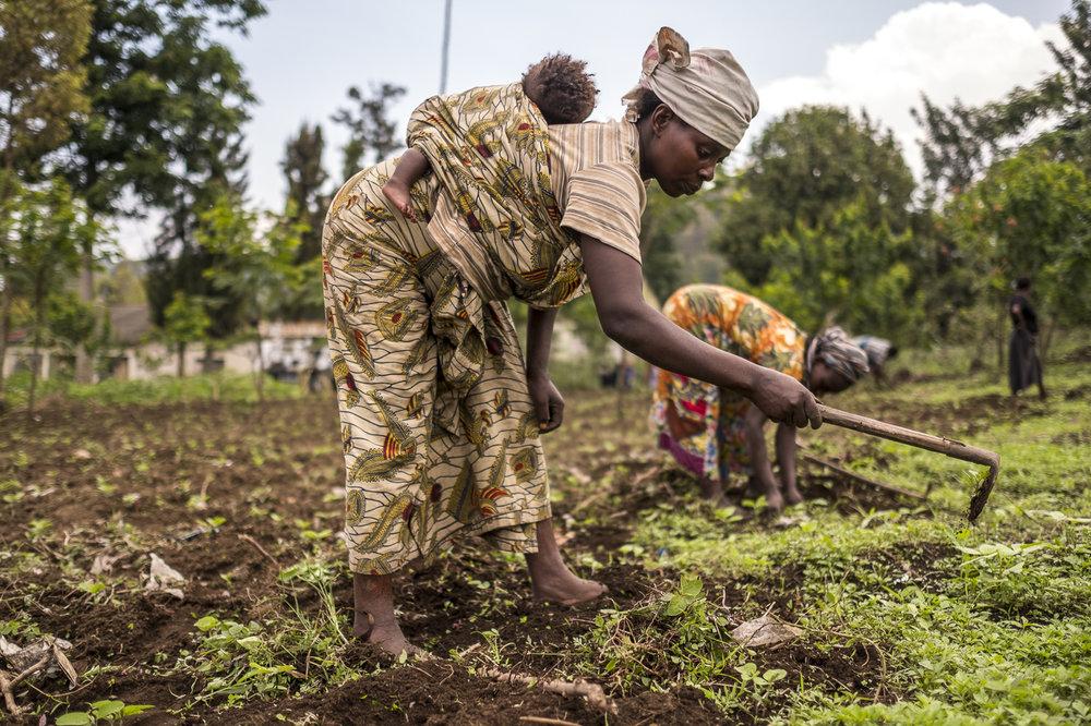 VISION ET MISSION - Notre Vision : Améliorer le quotidien des congolais et faciliter leur inclusion dans les systèmes de marchés en s'attaquant aux contraintes et en leur permettant de bénéficier de la croissance économiqueNotre Mission : ÉLAN RDC vise à réduire la pauvreté en République Démocratique du Congo en augmentant les revenus de plus d'un million de petits producteurs, d'entrepreneurs et de consommateurs entre 2015 et 2020.