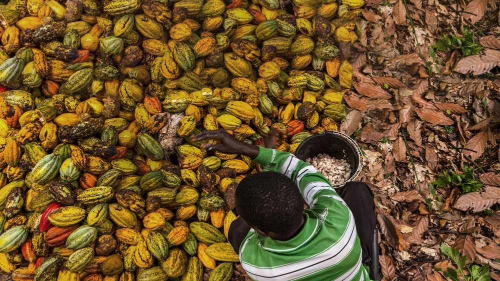 Assessing the Growth Potential of Eastern Congo's Coffee and Cocoa Sectors - CSIS