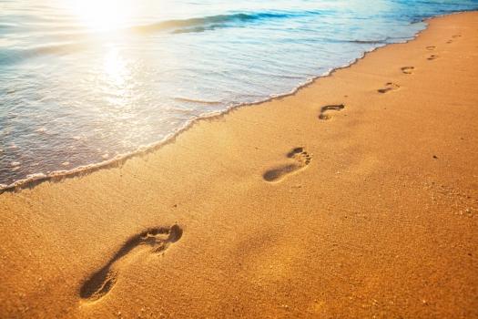 Leaving Positive Footprints - SeaPigs ultimate aim
