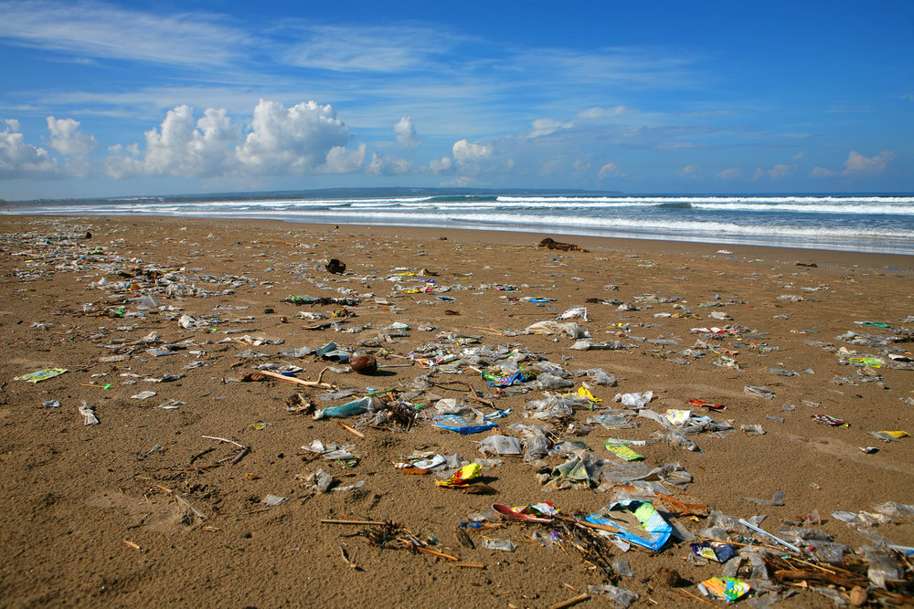 """""""We use plastic - or have done until now - with total abandon, without any care or concern about where it's going to go and what it might do"""" - Sir David Attenborough, May 2018"""