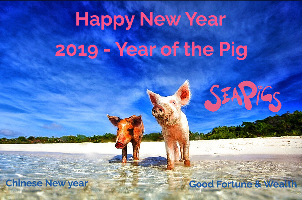 Year of the Pig - Sea Pigs - SeaPig