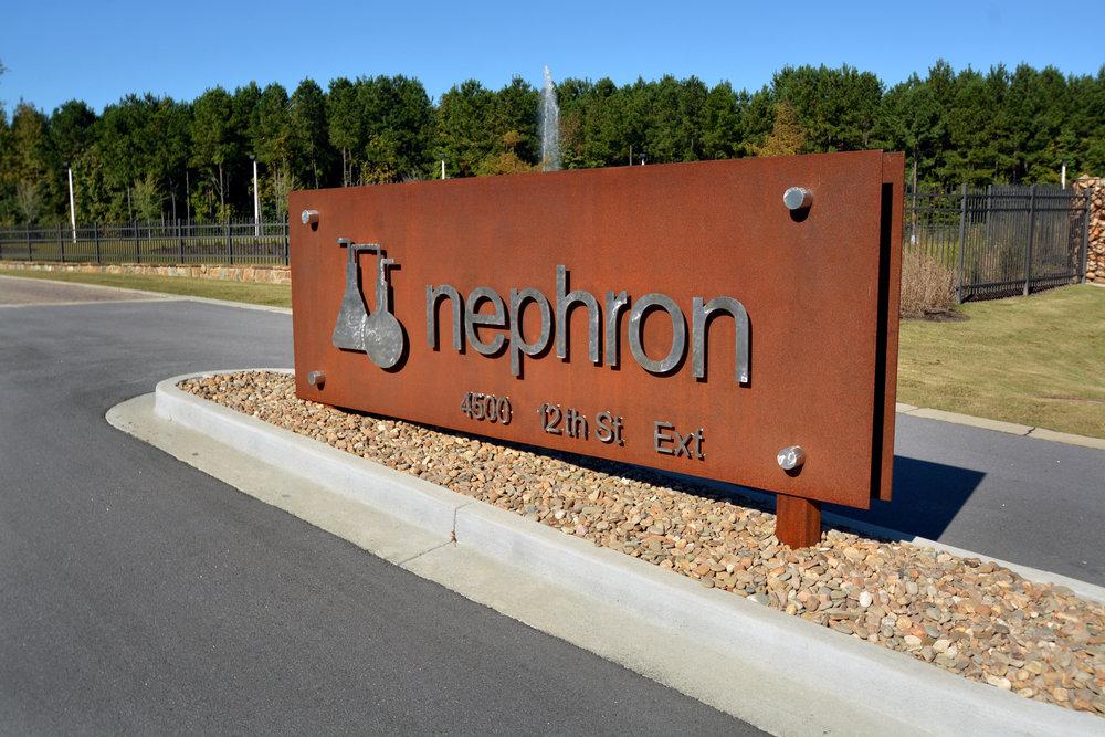 Nephron 5797.jpg