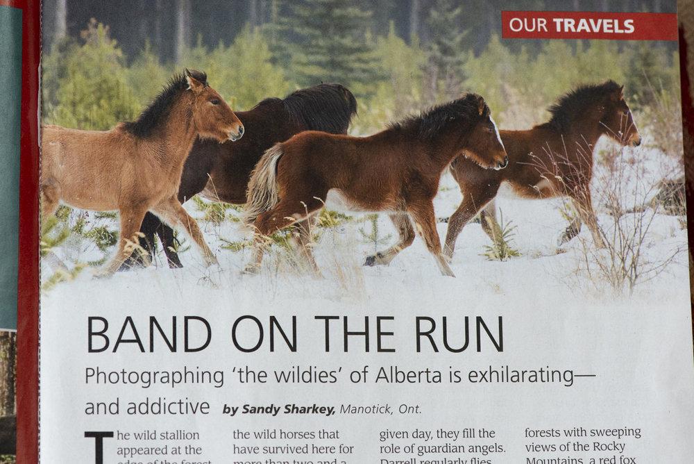 sandy our canada magazine (2 of 3).jpg