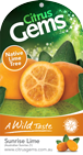 g-sunrise-lime.png